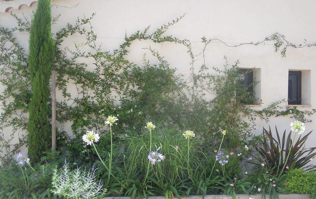 Aménagement d'un mur d'entrée